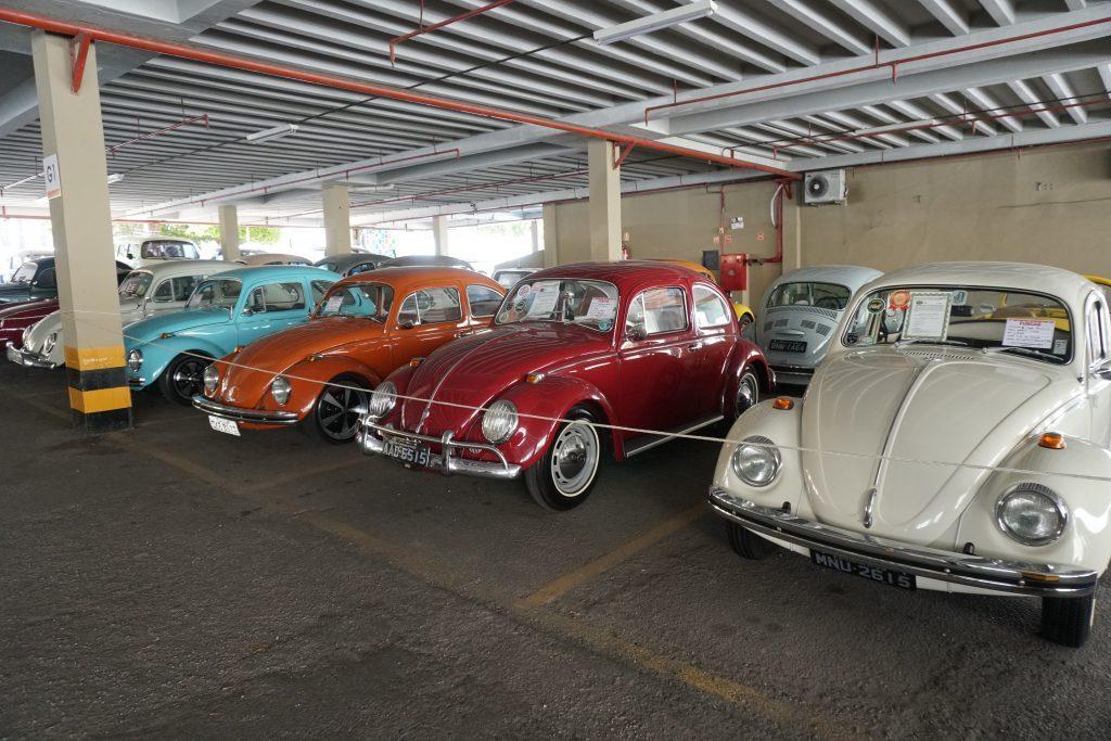 Encontro Nordestino de Fuscas reúne mais de 120 veículos em Maceió; veja fotos